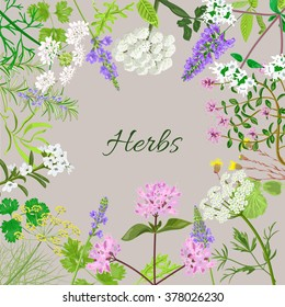 Vector card with herbal flowers. Vector illustration.