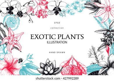 Vector card or invitation with hand drawn exotic plants illustration. Decorative frame design with tropical flowers isolated on white. Vintage template.