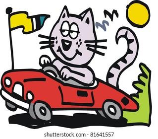 Vector cartoon of cat driving car