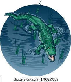 Vector cartoon clip art illustration of an alligator with an open mouth swimming or floating in swamp water with grass on a circle background in separate layers.