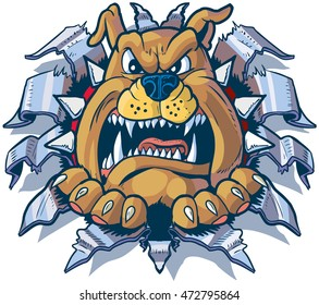 Vector cartoon clip art illustration of an angry bulldog mascot with a spiked collar ripping, punching, or tearing through aluminum or chrome steel sheet metal.