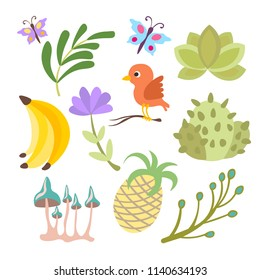 Vector cartoon cute set of savanna and tropical flowers, leaves and fruits isolated on white background