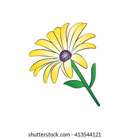 Vector cartoon daisy on white background.