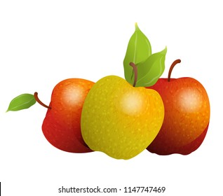 Vector cartoon element for design. Three delicious apples with stem and leaves, fruit design. Photo Realistic illustration of healthy vegetarian food. Perfect for grocery store, drinks and more