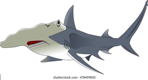 Vector cartoon - Hammerhead Shark