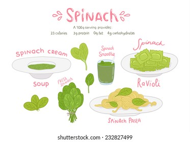vector cartoon hand drawn spinach food set - ravioli, pasta, smoothie, cream soup