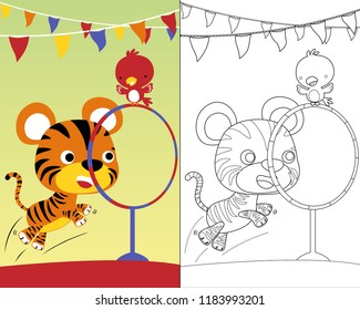 Vector cartoon illustration with animals funny circus player, coloring book or page. Eps 10