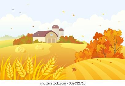 Vector cartoon illustration of a beautiful fall farm scene with wheat fields and barns