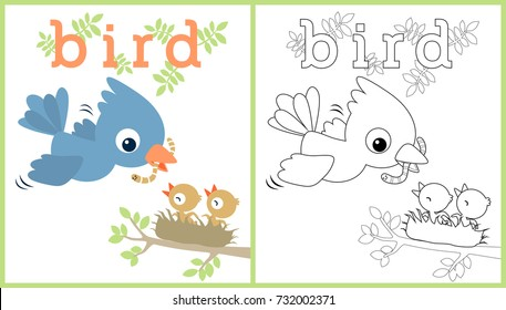 vector cartoon illustration of birds family, coloring book or page