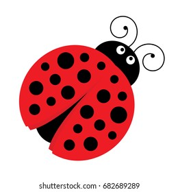 Vector cartoon ladybug. Vector cute ladybird. Ladybug vector illustration.