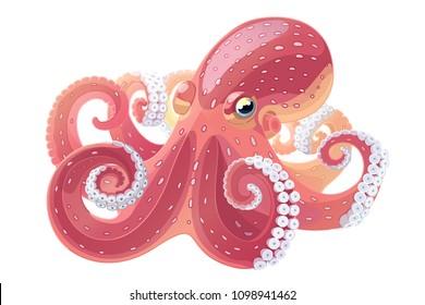 vector cartoon octopus. Aquatic water underwater animal. Hand drawn sketch. Wildlife sea ocean life. Aquarium exotic element. Nature pattern. Maritime, marine illustration isolated on white backgroud
