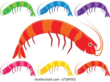 Vector cartoon prawns or shrimp in a variety of bright colours on a white background.