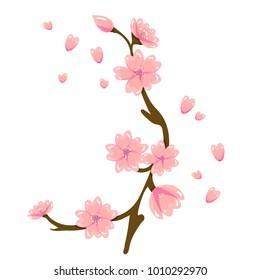 Vector cartoon sakura spring flower illustration