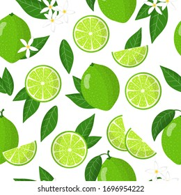 Vector cartoon seamless pattern with Citrus aurantiifolia or Key lime exotic fruits, flowers and leafs on white background for web, print, cloth texture or wallpaper.