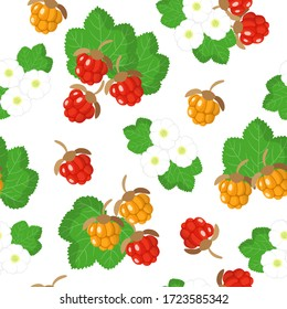 Vector cartoon seamless pattern with Rubus chamaemorus or cloudberry exotic fruits, flowers and leafs on white background for web, print, cloth texture or wallpaper