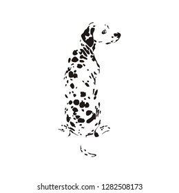 Vector cartoon style dalmatian dog