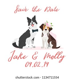 Vector cartoon style dog couple - border collie and beagle, wearing wedding symbols: bows and bridal veil. Save the date text.