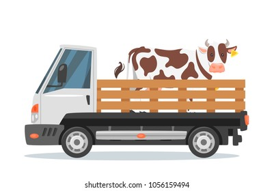 Vector cartoon style farmers car truck carrying a cow. Isolated on white background.