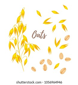 Vector cartoon style illustration of cereals - oats, oatmeal and seeds. Grain plant isolated on white background.