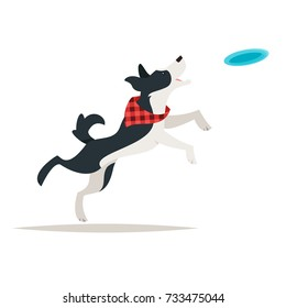 Vector cartoon style illustration of cute border collie dog running for the Frisbee, isolated on white background.