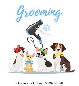 Vector cartoon style illustration of dogs of different breeds with colorful bows. Grooming concept. Hair dryer and scissors.