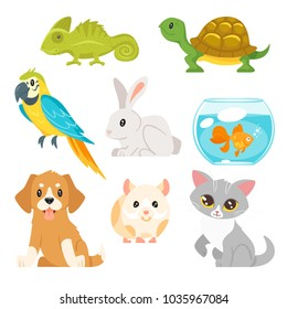 Vector cartoon style set of home animal pet - cat, dog, hamster and others. Isolated on white background.
