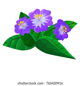 Vector cartoon volumetric purple flover isolated on white