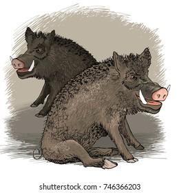 Vector cartoon of wild boars
