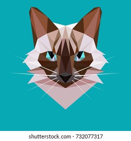Vector cat in a polygon style. Siamese cat head