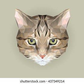 Vector cat in polygon style. Triangle vector illustration of animal for use as a print on t-shirt and poster. Geometric low poly design illustration. Cat icon. Kitten isolated element.