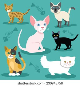 Vector cats flat icons Set. Cheshire, egypt, leopard, black, persian, scottish, siamese cat. Colorful illustration. Retro vintage stylish concept. Background with fish bones print.