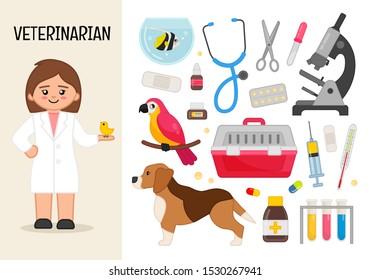 Vector character veterinarian. Illustrations of veterinarian equipment. Set of cartoon professions.
