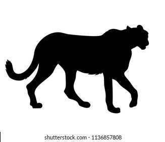 Vector cheetah side view silhouette
