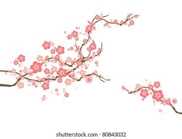 Фотообои vector cherry blossom
