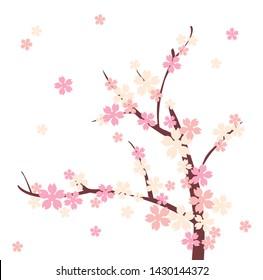 vector cherry blossom , beautiful pink flower