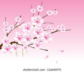 фотообои vector cherry blossom branch