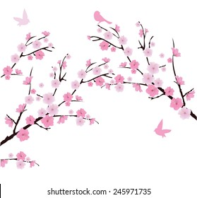 vector cherry blossom branches with birds