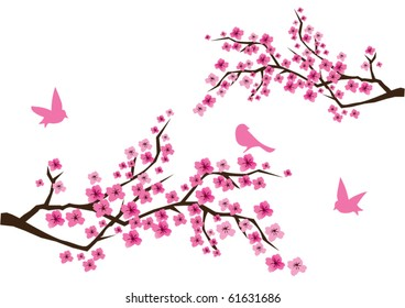 vector cherry blossom branches with pink flowers and birds. nature abstract, nature background