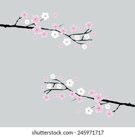 фотообои vector cherry blossom branches with space for text