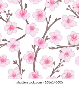 Vector cherry flowers and buds seamless pattern. Pink blooming flowers background
