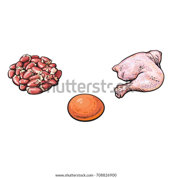 vector chicken egg, cut thigh leg meat and gizzards offal sketch cartoon  set  isolated