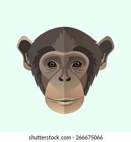 Vector chimpanzee portrait.