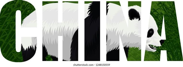 vector China word with giant panda bear