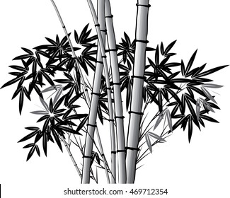 vector Chinese painting bamboo