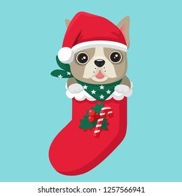 Vector Christmas icon dog French Bulldog. Bulldog puppy sitting in New Year's wear.