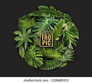 Vector circle banner with green tropical leaves on black background. Exotic botanical design for cosmetics, spa, perfume, beauty salon, travel agency, florist shop. Best as packaging design