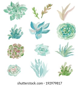 Vector Clip Art Collection of Watercolor Succulent Plants