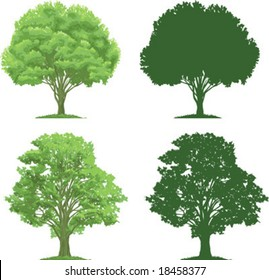 vector clip art of an ecologicaly green, strong trees. Silhouettes are also included.