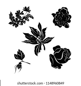 Vector clip art flowers in the style of barroco. Vector clip art flowers in Rococo style. Vector. Baroque pattern. Background