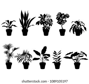vector clipart set of houseplants in pots,isolated black silhouette of flowers on white background
